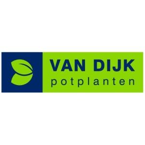 Van Dijk Potplanten
