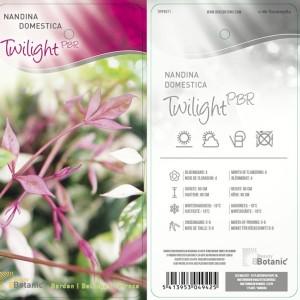Nandina domestica 'Twilight' (Dool Botanic)