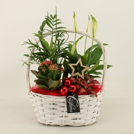 Arrangements Christmas (Mixt Creations BV)