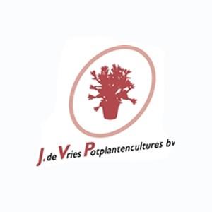 J. de Vries Potplantencultures BV