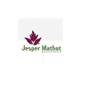 Jesper Mathot Potcultures