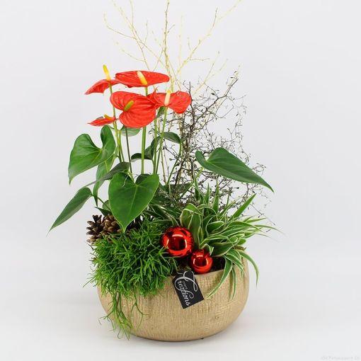 Arrangements Christmas (Mixt Creations BV)