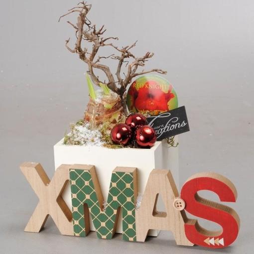 Arrangements Christmas '1805r' (Mixt Creations BV)