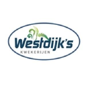 Westdijk's Boomkwekerijen
