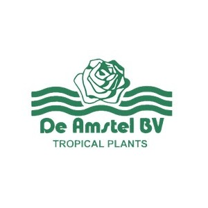 De Amstel BV
