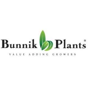 Bunnik Plants