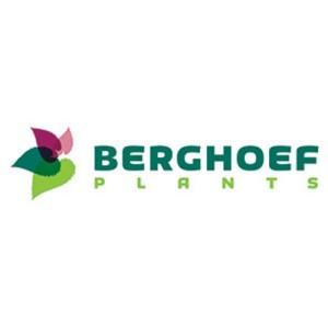 Berghoef Plants