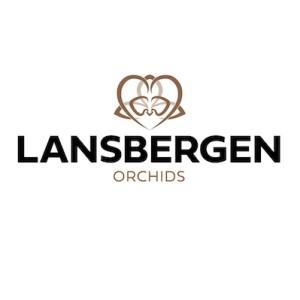 Lansbergen Orchids