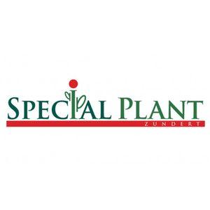 Special Plant Zundert