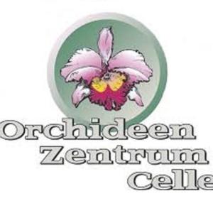 Wichmann Orchideen e.K.