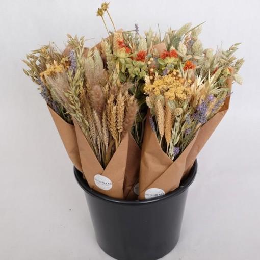 Dried flowers MIX (Gasa DK)