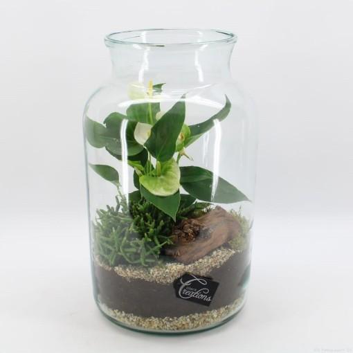 Arrangements Anthurium (Mixt Creations BV)