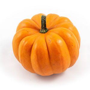 Cucurbita 'Orange Boo'