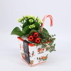 Arrangements Christmas