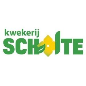 Kwekerij Scholte
