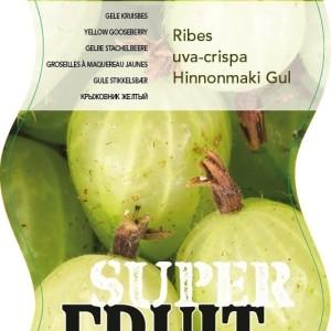Ribes uva-crispa 'Hinnonmäki Gul' (BOGREEN Outdoor Plants)